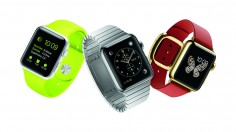 Everything You Want to Know About Apple Watch