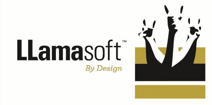 LLamasoft Raises $6M