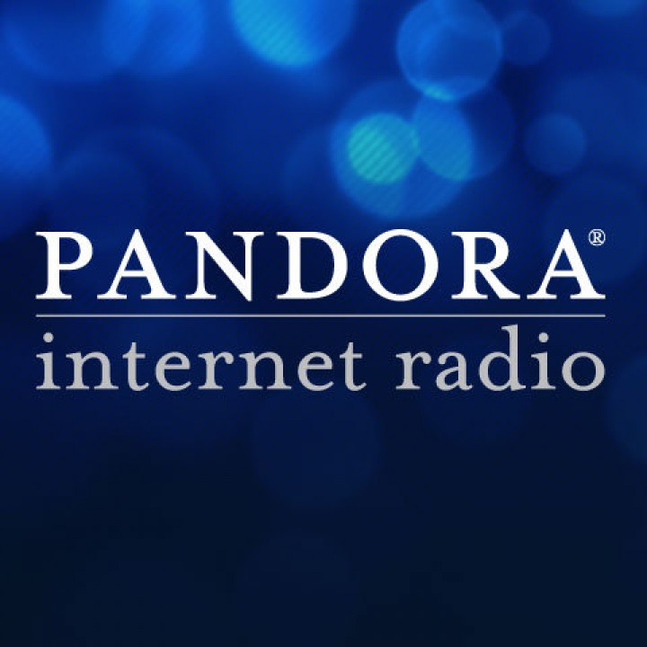 Pandora Elects Elizabeth Nelson To Board