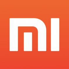 Xiaomi Raises $1.1B